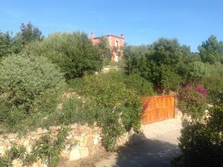 Elegant Villa With Private Pool - Porto Cervo - Porto Cervo vacation rentals
