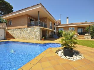 Villa Minaya - Las Galletas vacation rentals