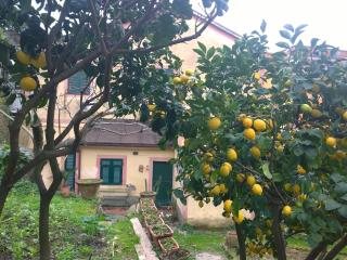 MONTEROSSO MARE 4- OLD COTTAGE DOWNTOWN MONTEROSSO - Cinque Terre vacation rentals