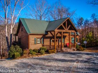 RUNABOUT TROUT LODGE-3BR/2.5BA CABIN ON THE TOCCOA RIVER,SLEEPS 12, EXCELLENT FISHING, WIFI, INDOOR/OUTDOOR WOOD BURNING FIREPLACES, HOT TUB, JETTED TUB, POOL TABLE, AIR HOCKEY, PAVILION WITH CHARCOAL GRILL AND PICNIC TABLE, PET FRIENDLY $210/NIGHT! - Blue Ridge vacation rentals