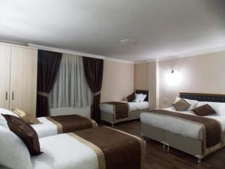 BeyazitHan Suites 5 - Istanbul & Marmara vacation rentals