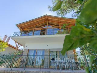 Villa Cleopatra - Arkitsa vacation rentals