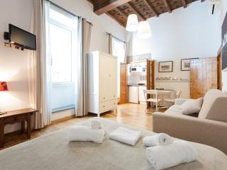 RESIDENZA SANSONI  easy & quite -Navona - S. Peter - Rome vacation rentals