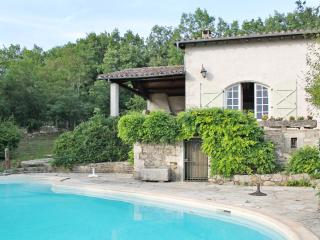 Country house in the Midi-Pyrenées, with large garden, 3 terraces and swimming pool - Saint-Antonin Noble Val vacation rentals