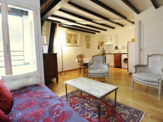 Classic 2 Bedroom Apartment in Paris - Paris vacation rentals