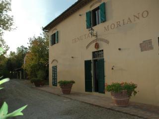 Tenuta Moriano - Apart bilo 1 - Montespertoli vacation rentals