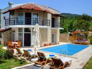 Holiday Villa In Kalkan - Fethiye vacation rentals