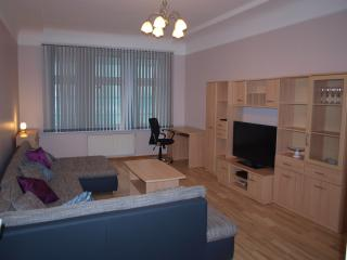 Kr. Barona 52 Apartments - Riga vacation rentals