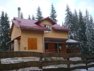 Spacious villa in Marisel, Transylvania, with terrace and garden surrounded by lush forest - Belis vacation rentals
