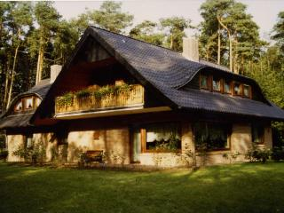 Cosy apartment in Lower Saxony with terrace and garden - Schneverdinge vacation rentals