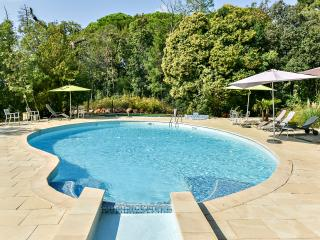 Lovely apartment in the Var, Provence, with shared pool and garden - La Garde vacation rentals