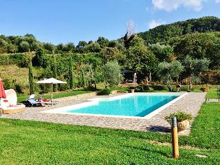 Rustic villa in Tuscany with swimming pool and large garden - Arcidosso vacation rentals