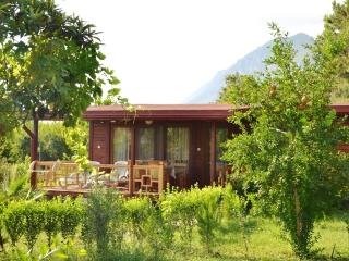 Charming bungalow near Antalya with terrace and mountain views - Cirali vacation rentals
