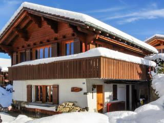 Beautiful flat in a chalet in the Swiss Alps – 20m from the slopes! - Bern vacation rentals
