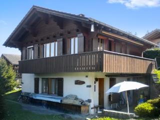 Beautiful flat in a chalet in the Swiss Alps – 20m from the slopes! - Aeschiried vacation rentals
