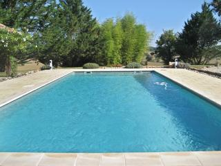 Spacious holiday property in Gascogne, w/2 separate houses, private pool and countryside views - Saint-Justin vacation rentals