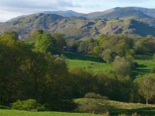 Holmeshead Van with a View - Ambleside vacation rentals