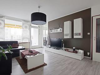 ID 2021 | 3 room apartment | WiFi | Laatzen - Laatzen vacation rentals