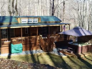 Family Cabin - Pisgah Forest vacation rentals
