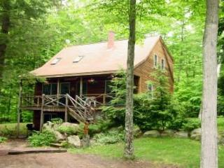 Four Bedroom Beach Access on Lake Kanasatka (FOR43Bplr) - Moultonborough vacation rentals