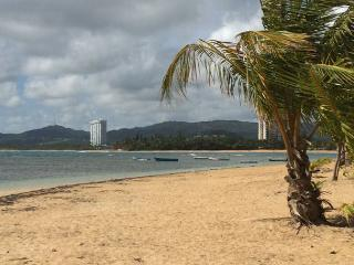 Tropical Beach Villa with Private Beach Access - Luquillo vacation rentals