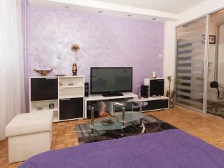 Arena Superb studio, sleeps2, wifi, parking - Belgrade vacation rentals