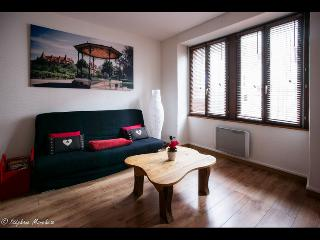 "Apartment ""La Petite Venise N°1"" - All inclusive - Bergheim vacation rentals"