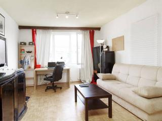 Revolution Square Classy Flat - Bucharest vacation rentals