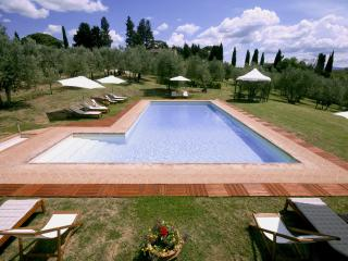 Farmhouse in a traditional Tuscan country Villa - San Casciano in Val di Pesa vacation rentals