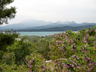 Capriccioli Fillirea - Porto Cervo vacation rentals
