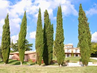 Cedro 1B - Bibbona vacation rentals
