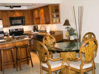 Ocean View 2 BR/2 BA with A/C and wi-fi - Kihei vacation rentals