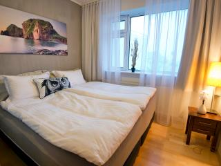 B14 Luxury apartment - balcony down town 401 - Reykjavik vacation rentals