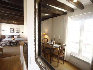 Le Charles V - Rooftop studio in the Marais - Paris vacation rentals