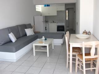 Aphrodite home - Piso Livadi vacation rentals