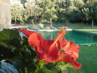 Art Lovers Retreat - Province of Girona vacation rentals