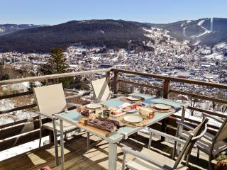Stylish flat in the Vosges with terrace overlooking the mountains, close to the ski resort and lake - Lorraine vacation rentals