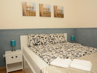 Horizon Apartment City Center Deluxe - C1 - Cluj-Napoca vacation rentals