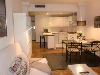 PLAZA CASTILLA 4 TORRES - Madrid vacation rentals