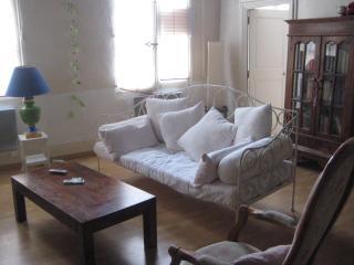 appartement de charme très central - Avignon vacation rentals