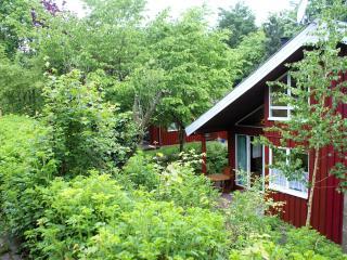 Ferienhaus Anke - Extertal vacation rentals