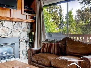 Lance's West 13 Loft (LW13loft) - Breckenridge vacation rentals
