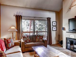 Powder Ridge 208 (PR208) - Breckenridge vacation rentals