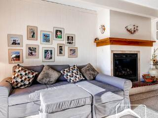 Ski & Racquet Club C103 (SRC103) - Breckenridge vacation rentals