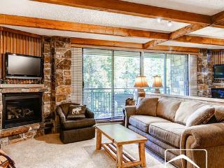 Trails End 110 (TR110) - Breckenridge vacation rentals