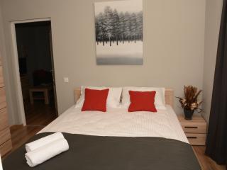 Horizon Apartment Elite Residence City Center - P1 - Cluj-Napoca vacation rentals