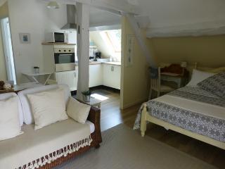 Studio Mirabelle - Faverolles-sur-Cher vacation rentals
