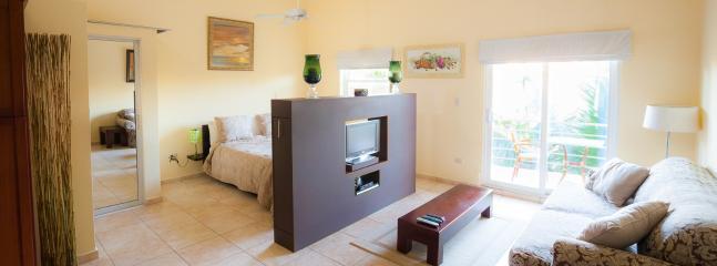 OCEAN DREAM Clean Fresh Organic studio w/balcony - Image 1 - Cabarete - rentals