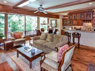 Downtown Luxury Condo Durant D2  with access to Pool, Hot Tub & Sauna - Aspen vacation rentals