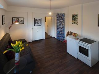 Böblingerstr design city apartment - Stuttgart vacation rentals